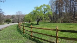 Split Rail Wood Fence in Falls Church, VA